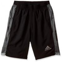 Adidas Men's Shorts