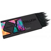 Navneet Youva Stallion Pencil