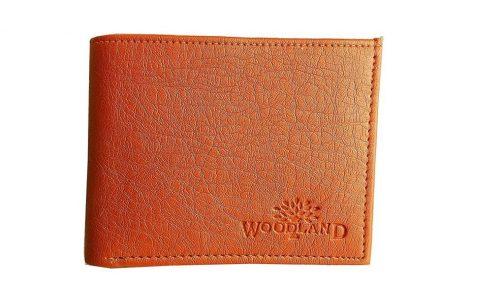 Woodland Brown Leather Formal Regular Mens Wallet 504x285 - Woodland Brown Leather Formal Regular Men's Wallet